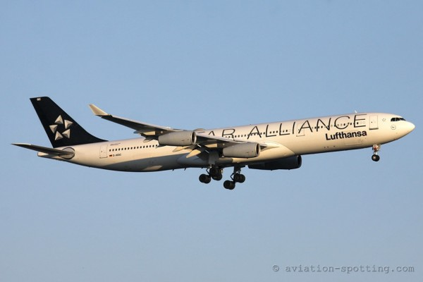Lufthansa Airbus 340-300 (Germany) star alliance